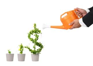 Money-Growth-Photo.jpg