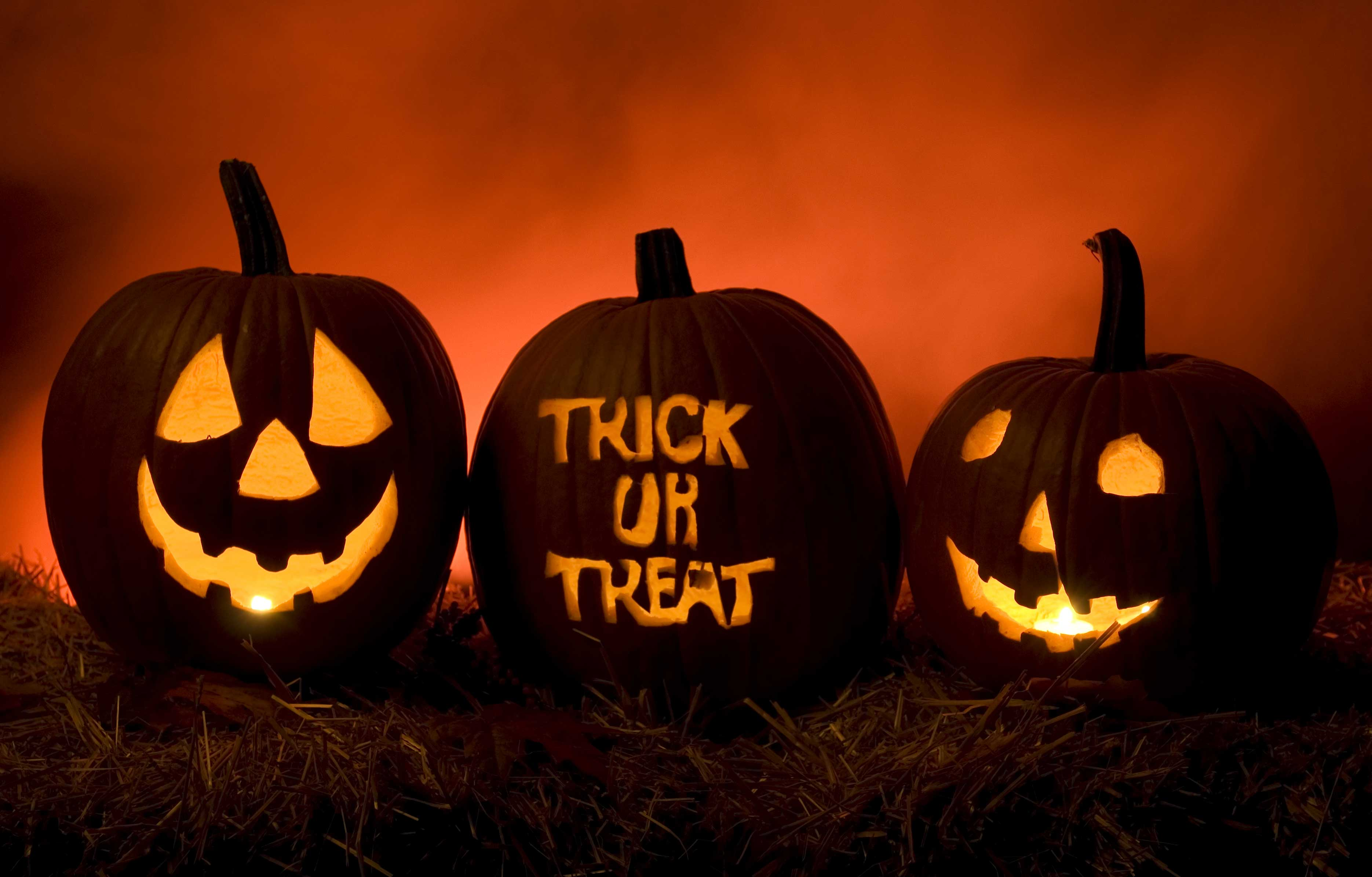 Is Your Vacation Rental Guest a Trick or a Treat?